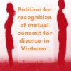 Application file for recognition of mutual consent for divorce in Vietnam