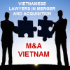 Vietnamese lawyers in merger and acquisition (M&A)